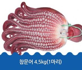정품문어 4.5kg